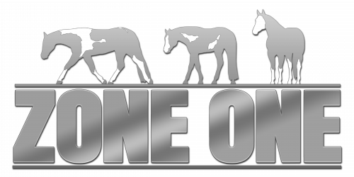 2016 APHA Zone One Shadow